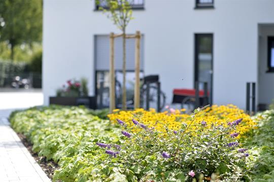Senioren- WG | Alternative zum Pflegeheim mitten in der Natur! Stellplatz 4