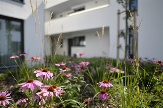 Senioren- WG | Alternative zum Pflegeheim mitten in der Natur! Stellplatz 5